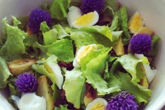 Weer een heerlijk kleurrijke salade van de tuin op tafel.
