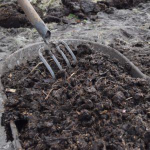 Oude stalmest: een belangrijk ingrediënt voor een succesvol en productief moestuinseizoen.