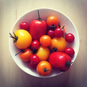Voor een mooie tomatenoogst is een kas eigenlijk onmisbaar.